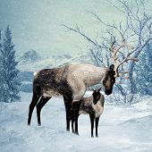 Reindeer and Fawn Winter Greeting Card