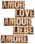 Liebe Wort in 5 Sprachen (Englisch, Spanisch, Deutsch, Französisch und Italienisch) - eine Collage von isolierten text