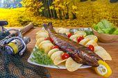 Hot smoked fish walleye (sander, pikeperch) fall fishing