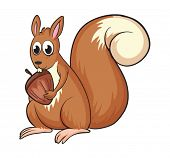 stock photo of buck teeth  - Illustration of a squirrel on a white background - JPG