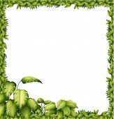 Illustration of a green frame on a white background