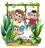 Illustration of three monkeys playing on a white background