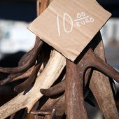 Antlers As A Souvenir With Price On The Counter