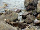 Rocks Near Jetty
