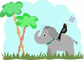 Elephant And Blackbird In A Jungle