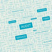 AUDIT. Word cloud illustration. Tag cloud concept collage. Vector text conceptual illustration. Usab