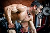 Muscular Male Bodybuilder Working Out In Gym, Exercising Triceps