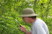 Plant Study Botanist