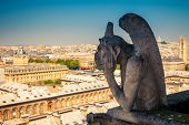 image of gargoyles  - Gargoyle on Notre Dame Cathedral - JPG