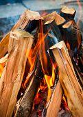 Closeup shot of camping fire