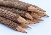 Bunch Of Pencils Stylized Tree Branch. Isolated On The White