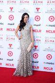 LOS ANGELES - SEP 27:  Aimee Garcia at the 2013 ALMA Awards - Arrivals at Pasadena Civic Auditorium on September 27, 2013 in Pasadena, CA