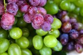 Ripe green and purple grapes close-up background