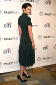 LOS ANGELES - MAR 15:  Cobie Smulders at the PaleyFEST -