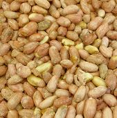 salted groundnuts (peanuts) closeup