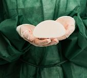 Plastic surgeon hands holding silicon breast implants