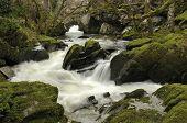 Waterfall On The Marteg River