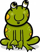 Frog Animal Cartoon Illustration