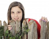Close-up of a beautiful young teen looking over the top of a rustic wood fence.  On a white backgrou