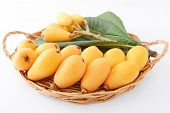 Loquats with leaves