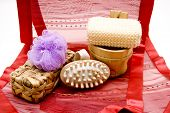 Wellness and Massage Brush with Net Sponge on Red Underlay
