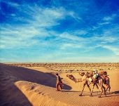 stock photo of camel  - Vintage retro hipster style travel image of Rajasthan travel background  - JPG