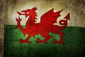Welsh flag. Grunge effect
