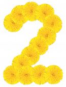 Number 2 Made From Dandelion Flower