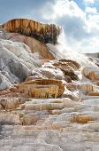 stock photo of mammoth  - Palette spring at the mammoth hot spring area - JPG