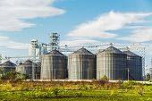 Cereal Silos Under The Blue Sky.