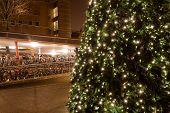 Christamas Tree In City Near Bike Parking