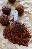 natural cocoa powder with chocolate candy truffle in a ceramic scoop