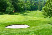 Golf Field European Landscape