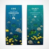 Diving vertical banners