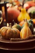 Restaurant Autumn Place Setting