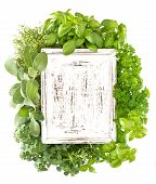 Closeup Of Fresh Herbs With Wooden Board