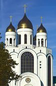 Cathedral Of Christ The Savior. Kaliningrad, Russia