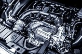 picture of muscle-car  - Car Engine - JPG