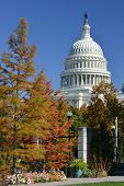 Capitol Building in Autumn - Washington D.C. United States of America