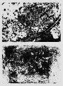 Cracked Paint  Surface Texture Bundle