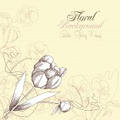 Floral Background with one tulipe and pansies