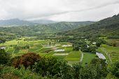Hanalei Valley, Hawaii