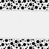 Black And White Polka Dot Frame With Torn Background