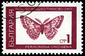 Vintage  Postage Stamp.  Saturnid Moth.