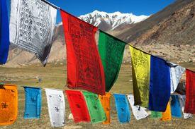 image of himachal  - Prayer flags with stupas  - JPG