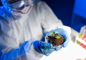 science, biology, ecology, research and people concept - close up of young female scientist holding petri dish with plant and soil sample in bio laboratory