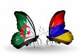 Two Butterflies With Flags On Wings As Symbol Of Relations Algeria And Armenia