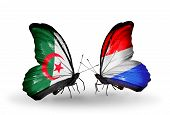 Two Butterflies With Flags On Wings As Symbol Of Relations Algeria And Luxembourg