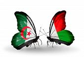 Two Butterflies With Flags On Wings As Symbol Of Relations Algeria And Madagascar