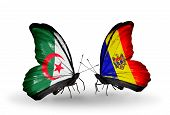 Two Butterflies With Flags On Wings As Symbol Of Relations Algeria And Moldova